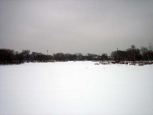 Lagoon Snow