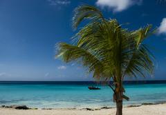 CURACAO_4 (Didels) Tags: beach playa curacao beaches curaao playas