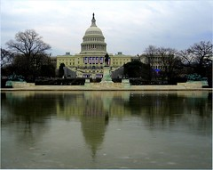 Reflecting Before the Inauguration (Kurlylox1) Tags: winter cold reflection ice hope washingtondc stage gulls flags uscapitol reflectingpool excitement soe capitolhill inauguration preparations barackobama mywinners theunforgettablepictures 44thpresident