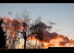 Wintersunset ( Annieta ) Tags: light sunset sky holla