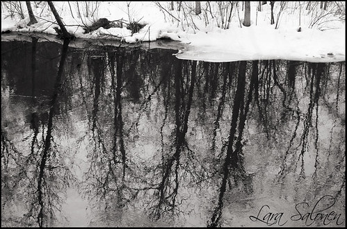 River Reflections In The Winter