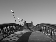 Voetbrug tussen Borneo eiland en Sporenburg (wisze) Tags: bridge amsterdam footbridge borneo brug eiland sporenburg stadsarchief voetbrug anacondabrug salamanderbrug