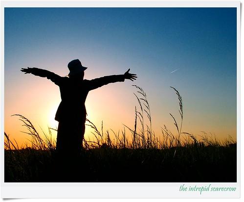"""the Intrepid Scarecrow by friendsofarnon-II, on Flickr"""