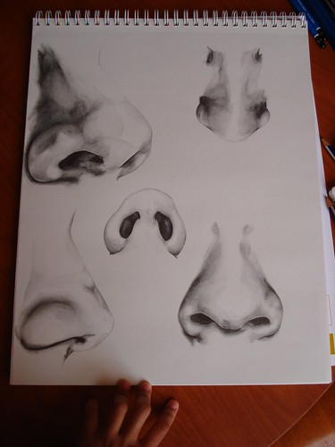 Nose Sketches