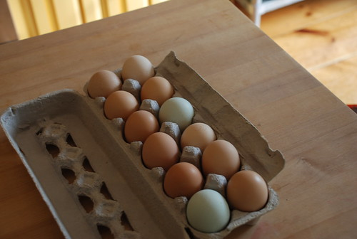 the fresh eggs from Barking Dog Farm that Emily and Jeremy sent home with me