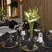 "Wedding Centerpiece at the Foundry Park Inn & Spa • <a style=""font-size:0.8em;"" href=""http://www.flickr.com/photos/40929849@N08/3772516204/"" target=""_blank"">View on Flickr</a>"