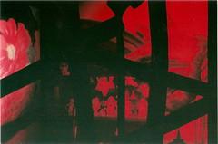 Cat Angels (jasminfish) Tags: bridge brazil cats colors brasil boats island lomo lomography barcos mask ponte es ilha wrecked máscara vilavelha colorido lomografia gambiarra 3ponte experiência morrodomoreno redscale fujisuperiaiso100 praiadoribeiro muitascores holga135bc