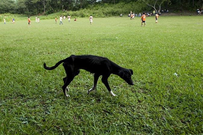 futbolPortraits_0033