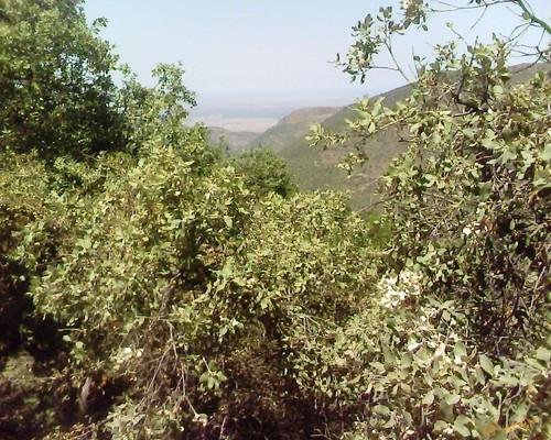 Beni Znassen جبال بني يزناسن