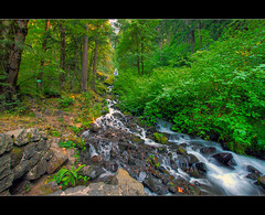 Wahkeena Falls 3 - HDR (David Gn Photography) Tags: nature oregon portland waterfall pacificnorthwest pdx columbiagorge hdr multnomahfalls wahkeenafalls photomatix scenicloop sigma1020mmf35exdchsm canoneosrebelt1i