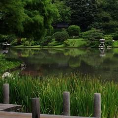 X is for Xanadu (mags_Tag) Tags: usa green garden japanesegarden stlouis x explore missouri idyllic xanadu missouribotanicalgarden wwwmobotorg articulateimages