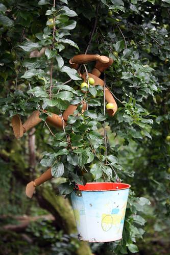 Ny fruktsort