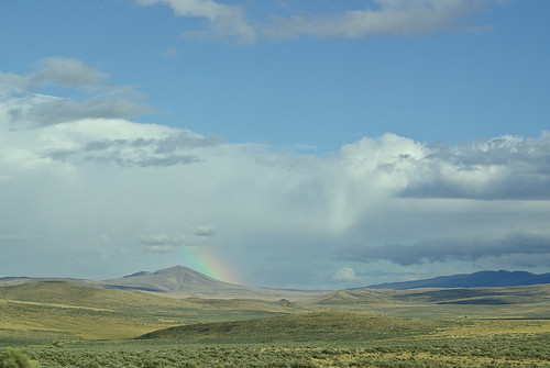 sagebrush rainbow