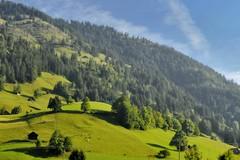 When the valley wakes (edouardv66) Tags: trees mountain nature montagne alpes 35mm landscape switzerland nikon valley fir chalet bern fx chalets sapins lauenen sannen