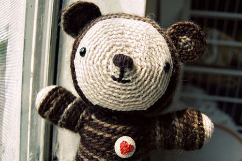 365.259: brown bear