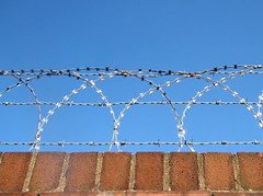 So there I was, happily taking some pix of some razor wire...
