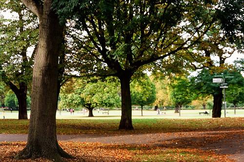 OM-10: Clissold Park