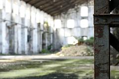. (*sonica81*) Tags: factory decay fabbrica abbandono decadenza sonica81 aliceallevi
