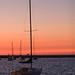 Sailboats on Lake Michigan