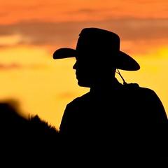 Mounted Policeman (Marvin Bredel) Tags: sunset sky newmexico hat silhouette colorful bright hotair balloon albuquerque albuqurque rider marvin mountedpolice horseman blueribbonwinner albuquerqueinternationalballoonfiesta marvin908 silhouettephotography bredel marvinbredel
