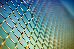 ~ Friday Fence ~ (©Komatoes) Tags: blue sky sun blur up yellow fence 50mm wire nikon close bokeh f14 g explore devon exeter 142 afs d40 247bokehlife 50mmafsg