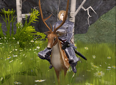 The Prince & his Steed (Beca Staheli) Tags: life gay boy cute forest pretty girly feminine avatar prince deer teen human secondlife armor kawaii sword second knight trap effeminate androgynous bishonen prettyboy femboy femboi