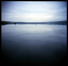 foyle (Seán Venn) Tags: holga kodak calm estuary marker portra navigation norniron foyle 400vc riverfoyle