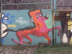 horse dog pony (Joe Kane) Tags: nyc horse dog brooklyn graffiti tv pony rate dklt