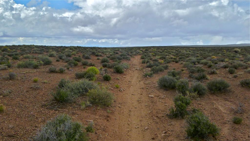 Desert riding in Moab