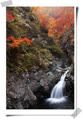 (Snow Flakes99) Tags: red cliff brown white mountain plant tree green nature water leaves yellow rock waterfall scenery fallen splash spattering