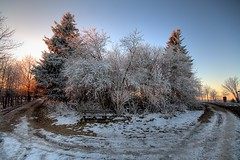 winter near winterberg (gari.baldi) Tags: trees winter sky snow cold nature canon germany landscape gimp sigma wideangle 2008 garibaldi hdr lightroom sauerland winterberg northrhinewestphalia photomatix 250d 1xp nordreihnwestfalen