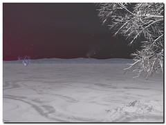 Icy times (Vestaligo) Tags: schnee winter snow tree night landscape bryce3d digitalart virtualreality moonlight landschaft otw beautysecret knstlichewelten vosplusbellesphotos