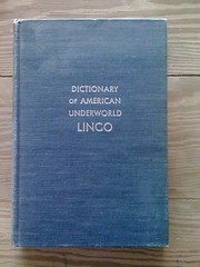 Dictionary of American Underworld Lingo