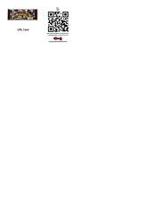 URL Card (Suizebol) Tags: url icandy ricohinnovations httpwwwfacebookcomprofilephpid834469744hiqerik2cjanssen