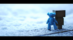 """Is this what they call SNOW?"" ""Yes, Danbo, that's right! Don't you want to go play in it?"" ""...Uh......."" (- t a k a k o -) Tags: bear blue friends snow nikon teddy teddybear letsgo brrrrrr bluebear 247 danbo nikkor50mmf14 d80 nikond80 revoltechdanboard ehbd theadventuresofbluebearandherfriends"
