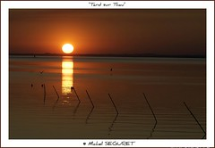 Etang de Thau sur le tard (Michel Seguret) Tags: sunset fab france verde green sol nature fun soleil nikon postcard coucher royal vert sensational d200 grn hq fabulous iq sonne languedoc shiningstar naturesbest ih etang languedocroussillon smrgsbord herault thau potofgold cartepostale wonderfulnature objektif excelent nikond200 inspiredbylove thinkgreen 5photosaday kartpostal balaruc royalgroup diamondheart aplusphoto flickrdiamond francelandscapes diamondstars thisphotorocks internationalgeographic flickrestrellas thebestofday gnneniyisi worldtrekker thebestoftheday gnnenlyisi overtheshot flickrovertheshot naturespotofgold photographersgonewild nikonflickraward flickrverte naturallymagnificent 100commentgroup vosplusbellesphotos momentdimagination flickrpopularphotographer croquenature panoramafotogrfico panoramafotografico excelenceofphotographer excelenceofphotographeraward flickraward michelseguret addictedtohighquality yourwonderland
