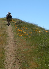 Hikers on Bald Peaks Trail (New Almaden, California, United States) Photo