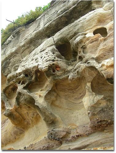 Snake Hole 1 dougbeckers.com