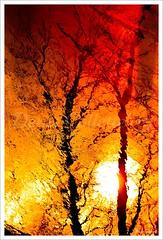 Indian sun...!!!