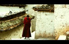 Solitude (James Yeung) Tags: china school monk buddhism tibet shangrila yunnan   soltitude   canon5dmarkii thegandensumtselingmonastery