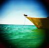 perhentians (Robin G. Ewing) Tags: beach islands holga malaysia perhentian xprocessing lpfloating