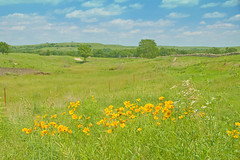 A Sunny Spring Day in the Flint Hills (frank thompson photos) Tags: kansas wildflowers prairie flinthills theland vftw prairiegrasslands wildflowersgrasses nativestonescenicbyway