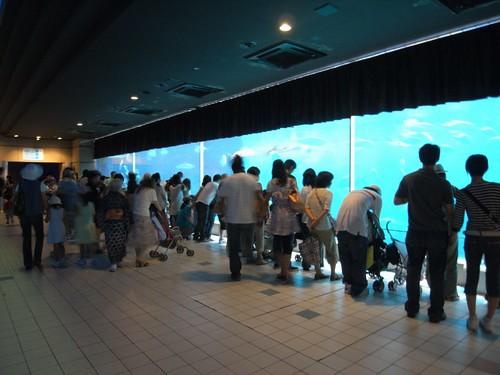 須磨海浜水族園-03