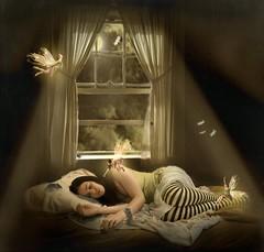 135.365 ~ .while we sleep. (just.K) Tags: light moon texture window girl beautiful socks clouds mouse spider bed shadows darkness sleep stripes manipulation bugs mice moths ladybug moonlight yeartwo lovely fairies asleep visitors meeeeee faeries pant 365days 135365 justk obramaestra