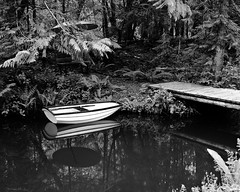 boat by the bridge (axiepics) Tags: bridge trees blackandwhite bw reflection forest boats boat pond branches walkway rowboat deux errington cestmieux gameswinner copyrightalexskellyallrightsreserved