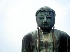50/365: 大仏 (Daibutsu) (joyjwaller) Tags: japan temple shrine nirvana buddha statues daibutsu meditation kanagawa bigbuddha 大仏 kamakua project365