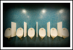 Urinals - 247/365 (Paul J White) Tags: blue urban white newcastle nikon mosaic toilet tiles 365 toon civiccentre urinals porcelain d300 project365 tokina1116mm flickrunitedaward