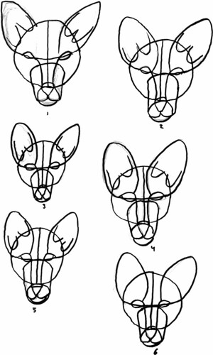 Wolves, part 10