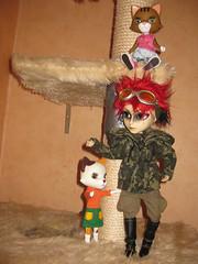 Catsitting (Capt. Peter) Tags: japan doll pullip igor hash junplanning taeyang grooveinc