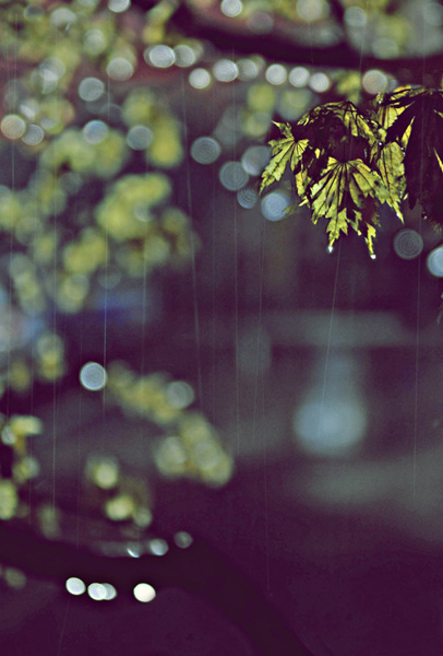 Rainy_night_by_junehee - Copy